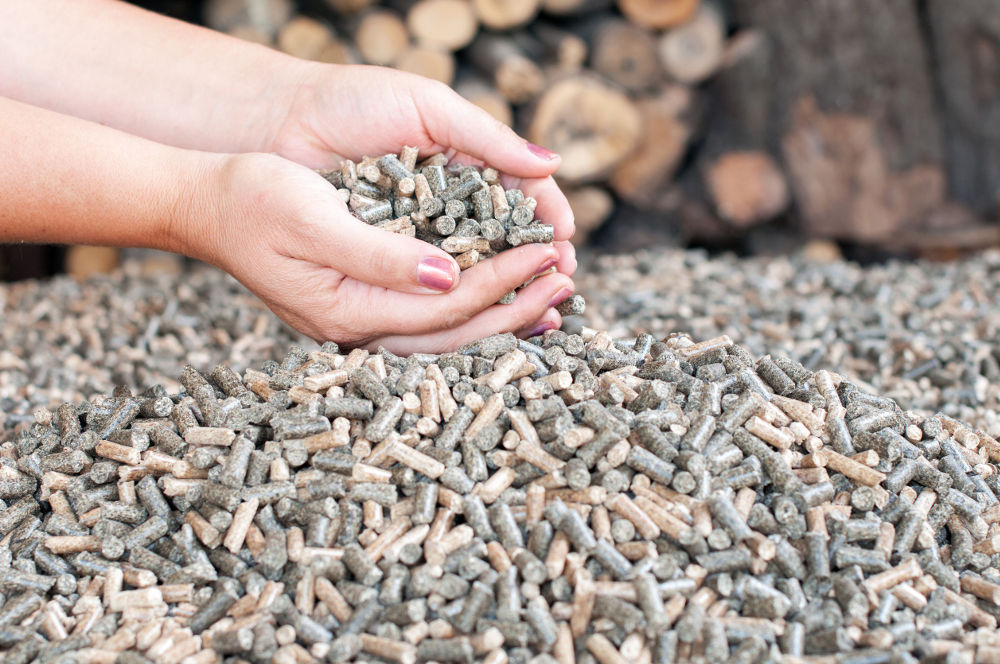 Biomasse a pellet